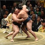 相撲の貴ノ富士は力士引退処分か?過去に起こした暴力事件は?貴乃花の弟子だった?